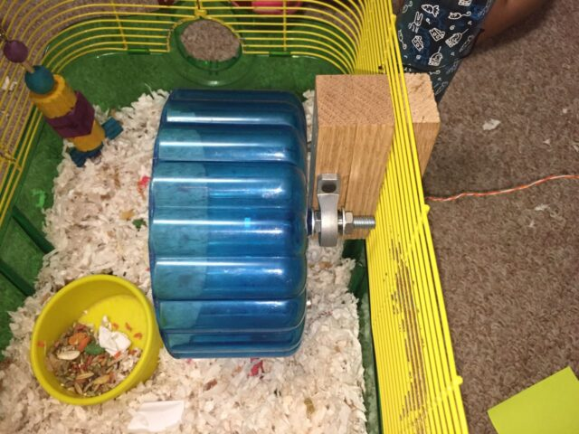 Side view of the mounted hamster wheel pedometer