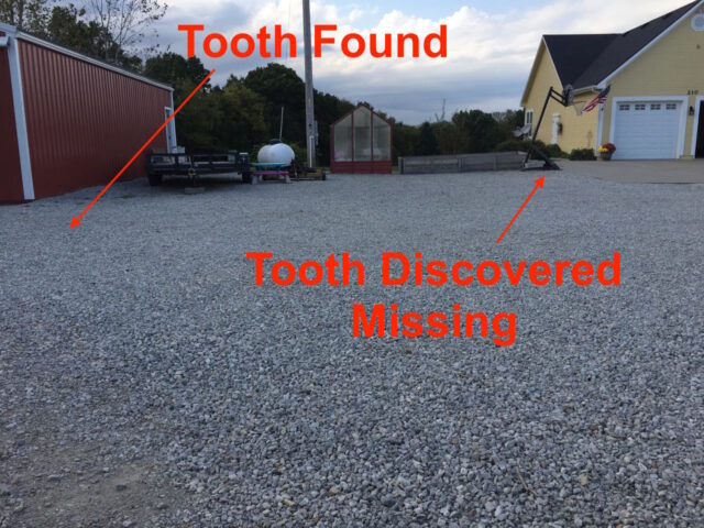 Location here the tooth was found