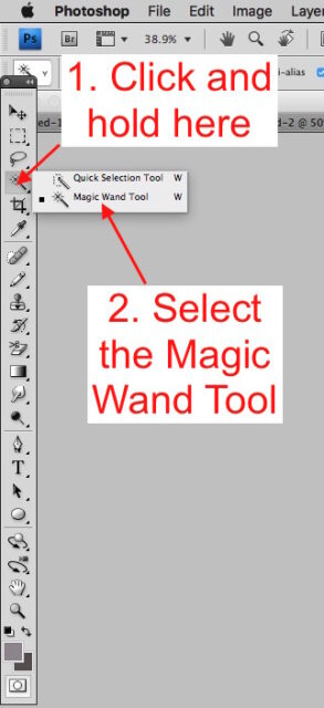 Selecting the Magic Wand Tool